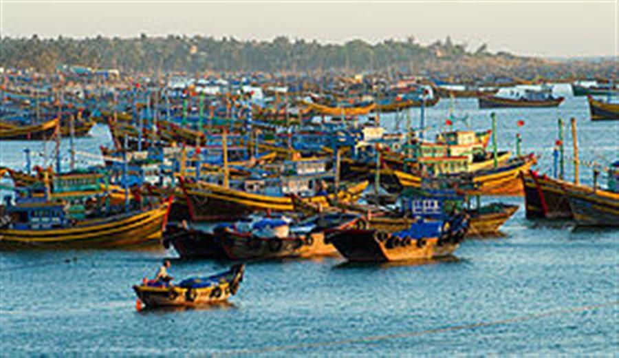 Hình ảnh đẹp Bán thiết bị dầu khí Bình Thuận