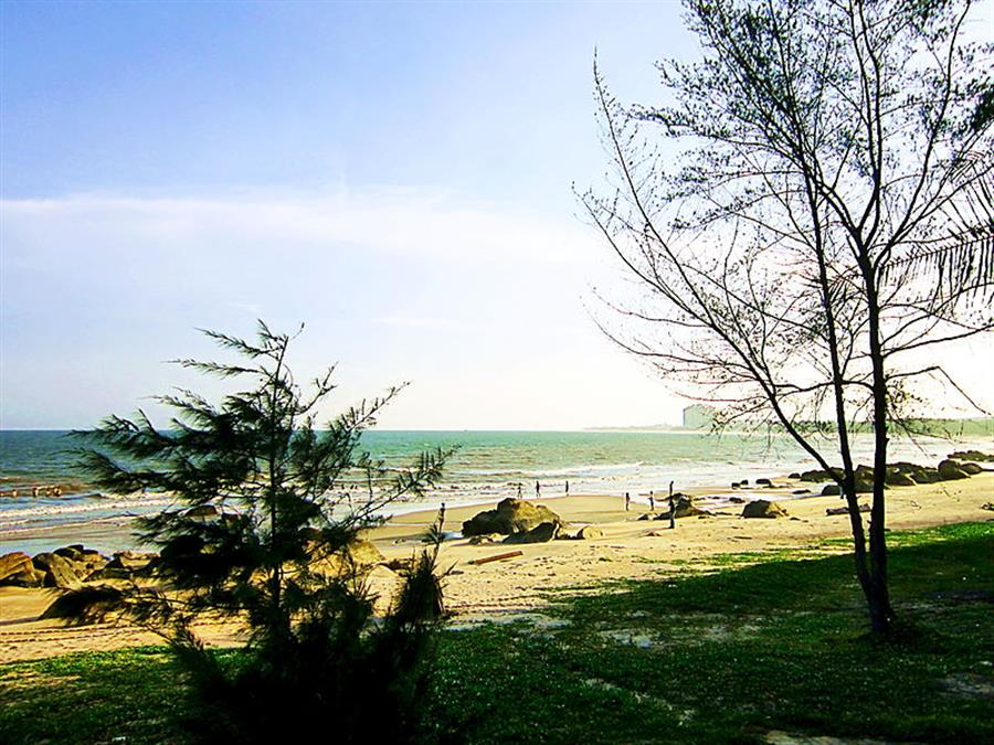 Hình ảnh đẹp Máy đo sơn ở Xuyên Môc Bà Rịa - Vũng Tàu