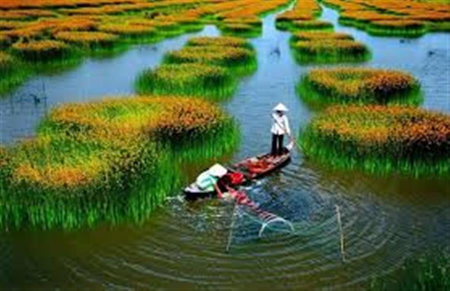 Hình ảnh đẹp Phân phối vật tư thiết bị dầu khí ở Việt Nam